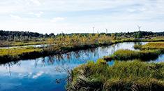 Peatland of energy peat producer Vapo Ltd.