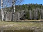 Syksyinen aurinkoinen päivä pohjavesimittauspisteessä metsän laidassa.