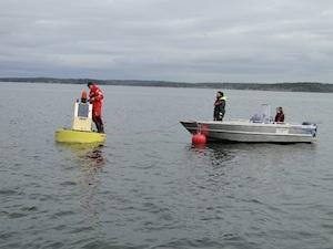 Seili YSI-anturi seuranta. Kuva mereltä jossa miehiä veneellä asentamassa poijuun mittauslaitteita.
