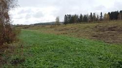 Syksyinen kuva Hämeen ammattikorkeakoulun pellolta.