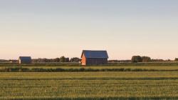 Maisemakuva Kauhavalaisesta pellosta jossa latoja aamuauringossa.