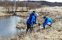 Kolme tutkijaa kerää näytteitä heinäpellon vieressä olevasta joesta.