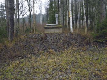 Pumppaamo metsässä.